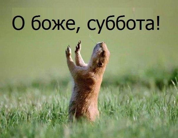Можно спокойно послушать радио Вельвет www.radio-velvet.ru