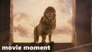 Хроники Нарнии: Лев, колдунья и волшебный шкаф (2005) - Воскрешение Аслана (11/13) | movie moment