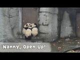 Three Poor Buddies Wait For Nanny To Open The Door iPanda