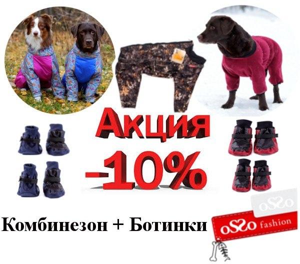 ПетСовет - интернет-зоомагазин, доставка заказов по всей России - Страница 2 D4AngLa4AGU