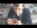 Независимое расследование картона, бензина и шоколадной пасты