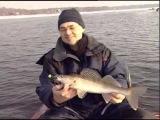 Рыбачьте с нами 45: Ловля судака зимой. Последний лед