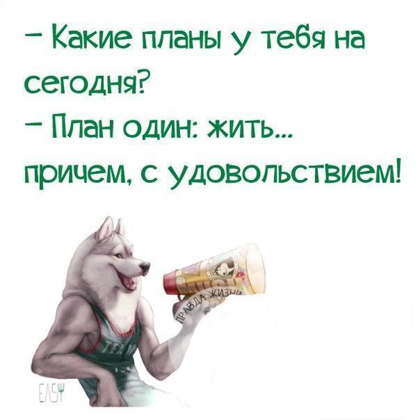 https://pp.vk.me/c543101/v543101567/15ed4/N7Otof4UuAk.jpg