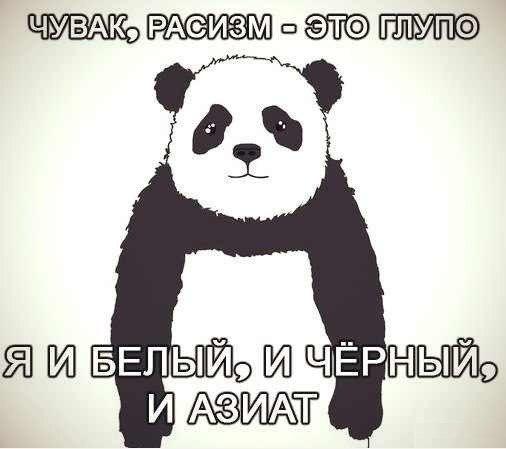 http://cs617421.vk.me/v617421530/13792/eLqpzlQBWjQ.jpg