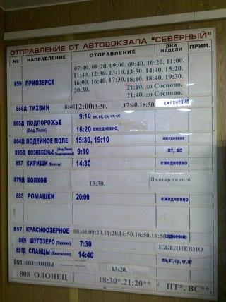 Расписание автобусов из белгорода в санкт петербург