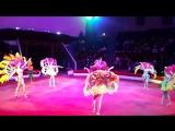 ***КАТЮША*** шоу балет. Бразильский карнавал. Пермский государственный цирк.#шоубалеткатюша#цирк#перья#бразильскийкарнавал#шоу
