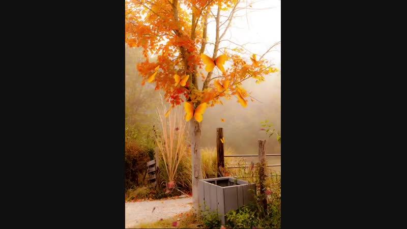 Рыжая осень , красавица осень......Ах рыжая осень , как ты хороша..
