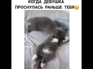 Точ в точ)