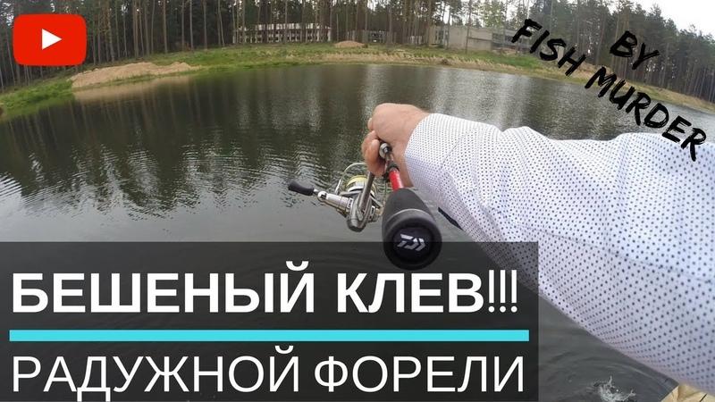 Рыбалка на форель. Бешеный клев Ловля форели на спиннинг