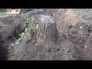 Корчевание мега пней Обухов удаление деревьев