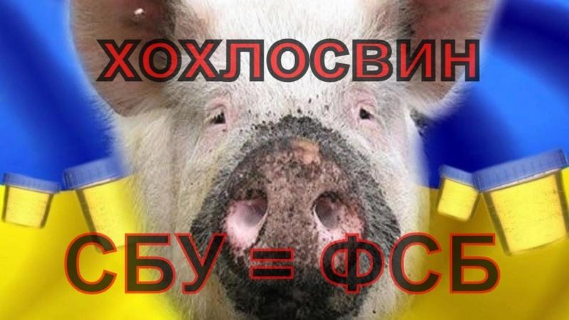 Украинцы, уймите своих хохлосвинов! СБУ тоже ФСБ, но еще тупее