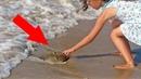 Если вы НАЙДЕТЕ ЭТО на пляже, то КАК МОЖНО СКОРЕЕ уносите ноги