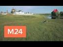 Вера Надежда Любовь Бобренев монастырь Москва 24