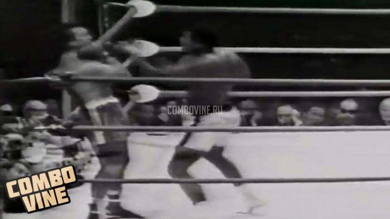 COMBO VINE Мухаммед Али (Бокс, Нокаут)