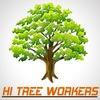 Удаление и лечение деревьев в Москве-htw.su