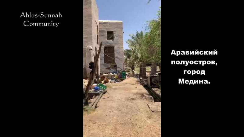 Дом, где жил правнук Пророка Мухьаммада, мир ему / Шейх Мухаммад Гига