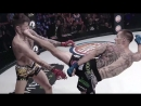 Значимые события на турнире Bellator 204