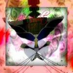 http://cs410518.userapi.com/v410518074/2518/C-A-YpKxuTM.jpg