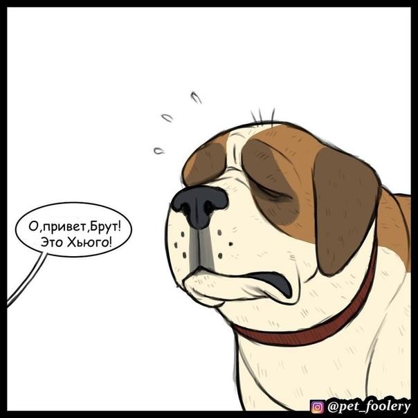 Брут и Пикси Иллюстратор: Pet_foolery