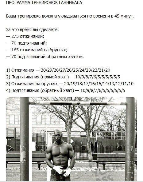 Тренировка Ганнибала