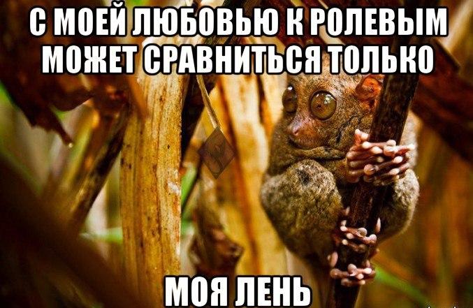 https://pp.vk.me/c619724/v619724055/ebf8/UfI_9BvikBU.jpg