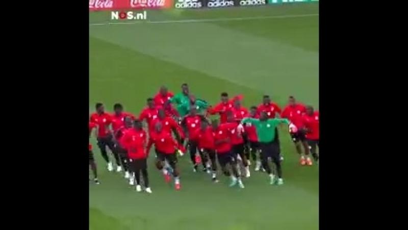 Футболисты сборной Сенегала станцевали на тренировке