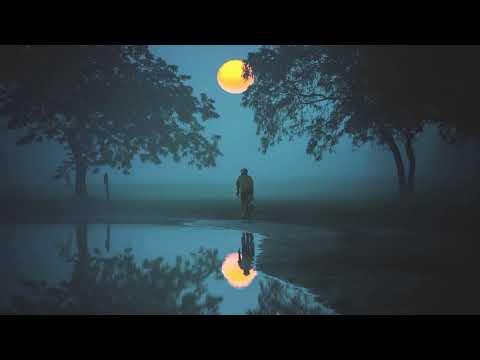 Bee Hunter - Moonwater (2018 Re-Edit) [Perplexity Music]