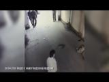 Убийство Физули Гараева (30.04.2018)