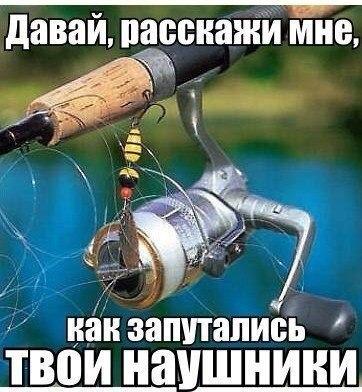 szNKbk_OmNE.jpg