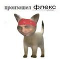 Илья Давыдов фото #2