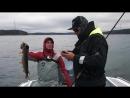 Клев трофейной щуки и рыболовные приметы