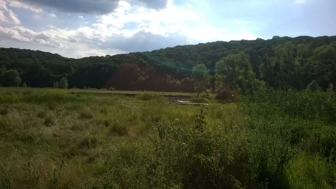 Киев - Гомольшанский природный парк (Харьков) 1Vsd5JEBJec