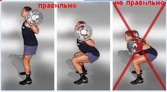 упражнения для нижнего пресса на тренажерах для женщин