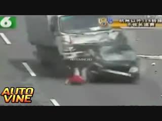 Auto vine #317