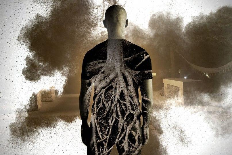 Жестокое зеркало: как психоделический опыт с аяуаской изменил меня