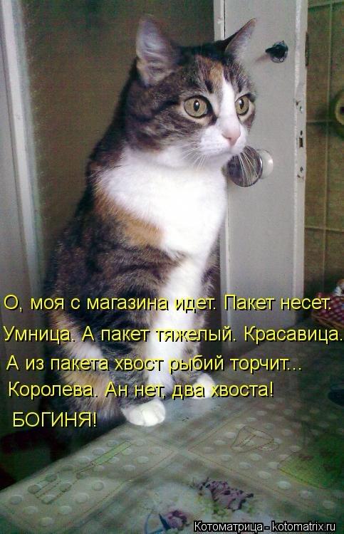 http://cs403430.vk.me/v403430142/5702/18LnY54Zxw8.jpg