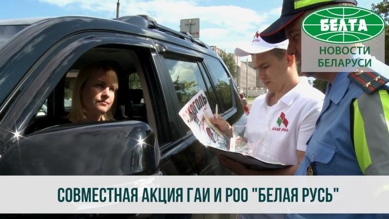 Госавтоинспекция и Белая Русь позаботились о пешеходах