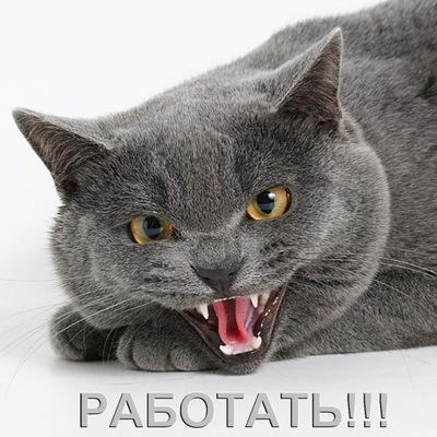 Ульяна Рябокрыс, 17 июля , Калининград, id130919676