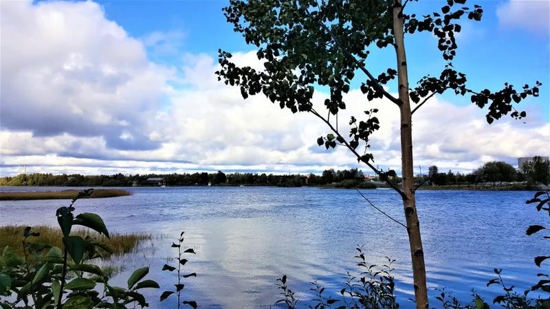 Pedron syyslenkki. Sonnisaari, Oulu, Suomi. Finland Финляндия, Оулу.