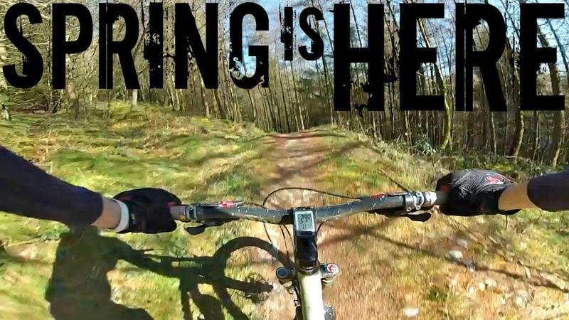 Spring is Here - Cwm Rhaeadr