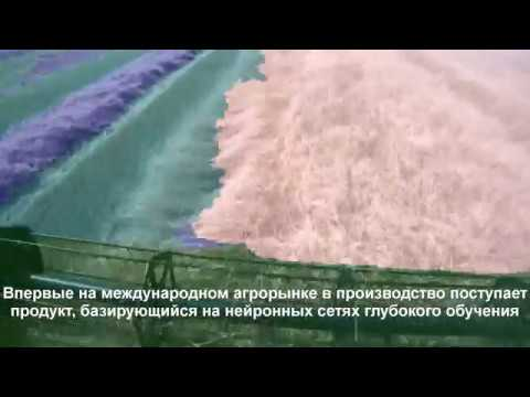 Тестирование беспилотного комбайна в Белгородской области