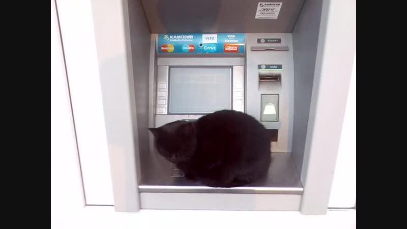 Акча бетте)Минзәләдә банкомат акча бирми песигә