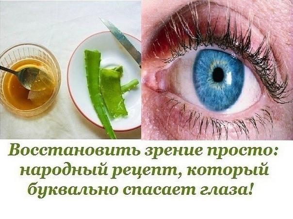 Алоэ — настоящее спасение для тех, кто страдает от проблем со зрением. Делимся рецептом чудесного лекарства с соком алоэ.