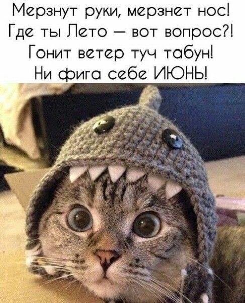 Фото №456244951 со страницы Милы Агеевой