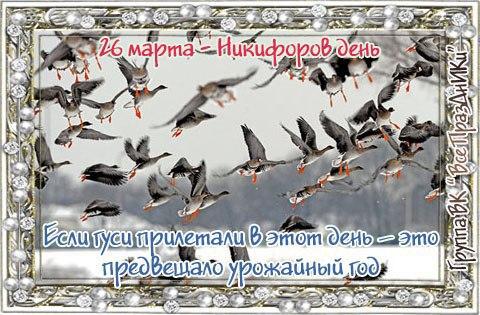 https://pp.userapi.com/c7003/v7003893/451be/zoo2t5IM1Mg.jpg