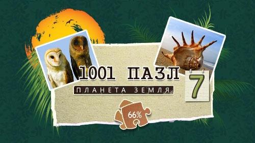 1001 Пазл. Планета Земля 7