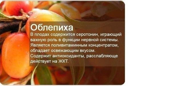 http://cs620517.vk.me/v620517047/100c6/GnCPFMvGzTw.jpg