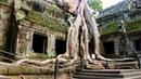 Angkor Ancient Mega City in the Jungle