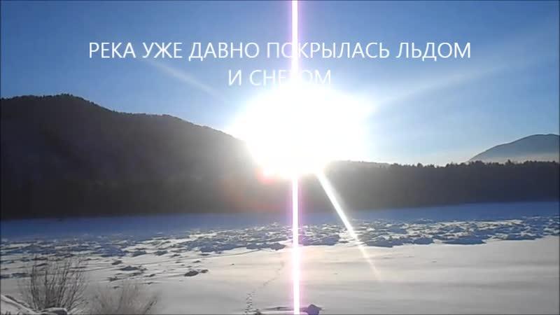 Зимний бор в Абазе. Пушкарева Елена, МБОУ АСОШ №49 8кл г. АБАЗА