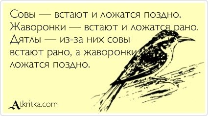 https://pp.vk.me/c316822/v316822645/29a/nzNg7pZ55cQ.jpg